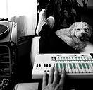 Dog music_edited.jpg