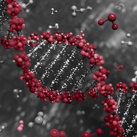 Micro RNAS.jpg