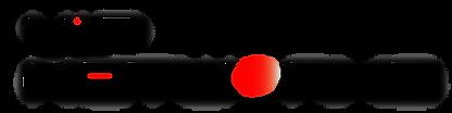 vipnetworks Logo.png
