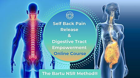 Self Back Pain Release & Digestive Tract