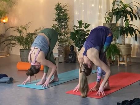 Yoga-utbudet växer med Zoom