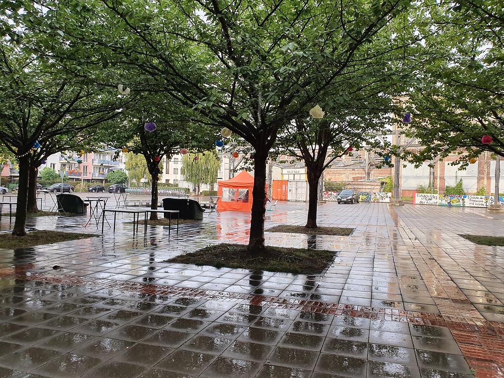 Fünf Bäume und nasse Bodenplatten