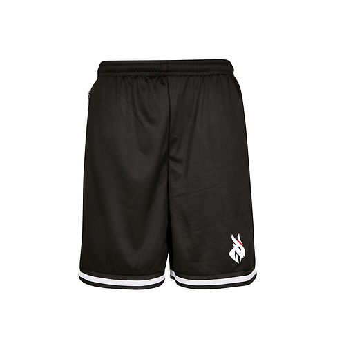 Shorts Mesh Sports