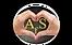 AFS logo.webp