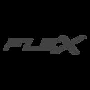 FLEX LOGO - SITE.png