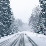 snowy road in winter forest.jpg