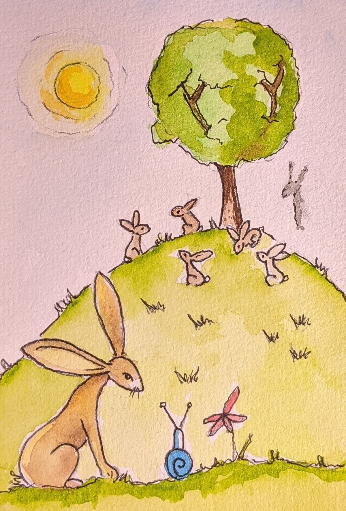Day 6 Watership Down