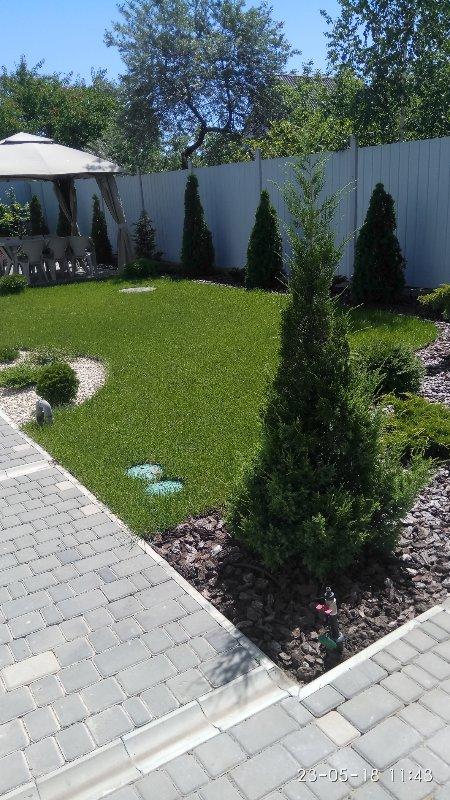 Купить Рулонный газон в Одессе