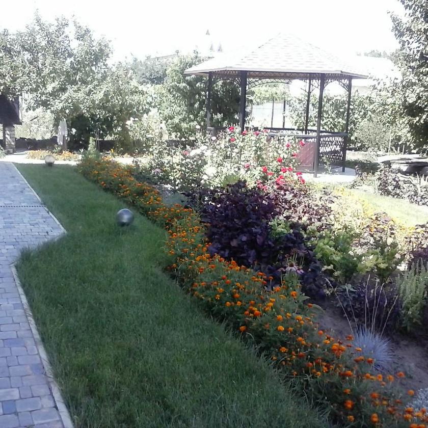 Миксбордер из цветов при озеленении участка Одесса