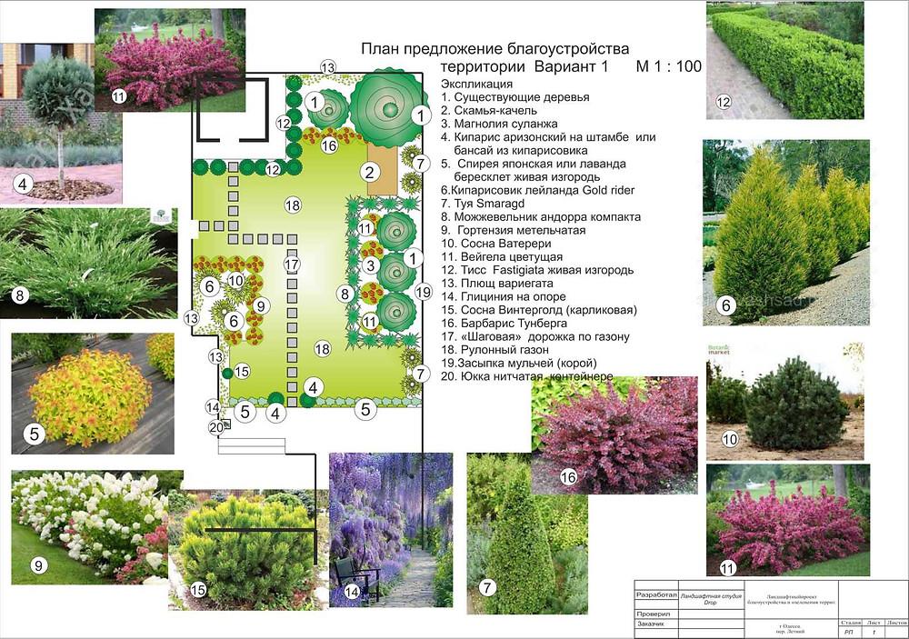 Создание ландшафтного проекта озеленения в Одессе