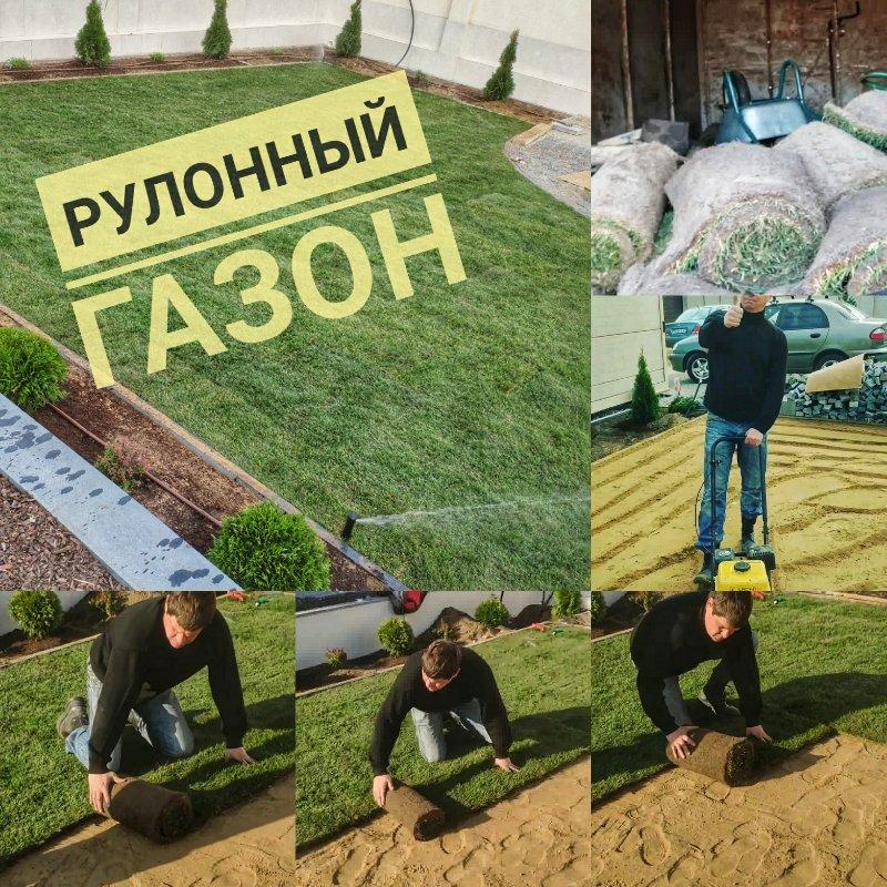 замена старого газона на новый рулонный в Одессе