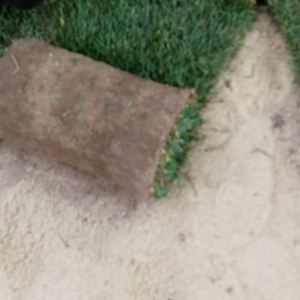 Укладка и подрезка рулонов газона на участке