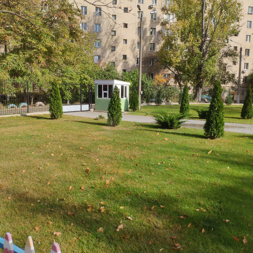 Посадка растений при озеленении детского сада в Одессе