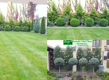 Ландшафтный дизайн и озеленение Совиньон