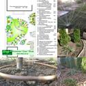 Озеленення ділянки в Одесі на 10 фонтана