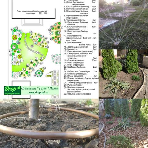 Озеленение участка в Одессе на 10 фонтана