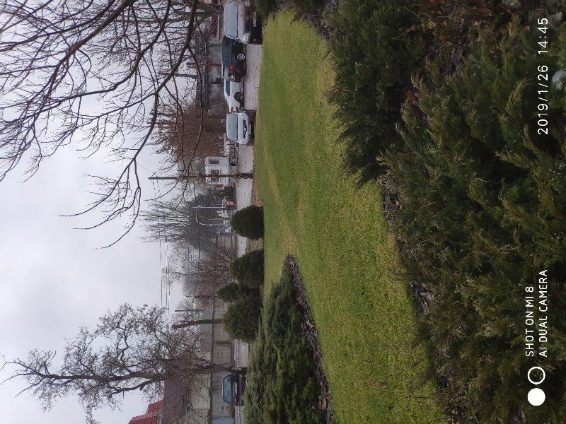 рулонный газон зимой