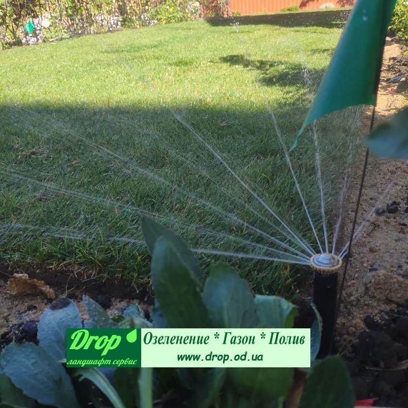 автополив газонной травы