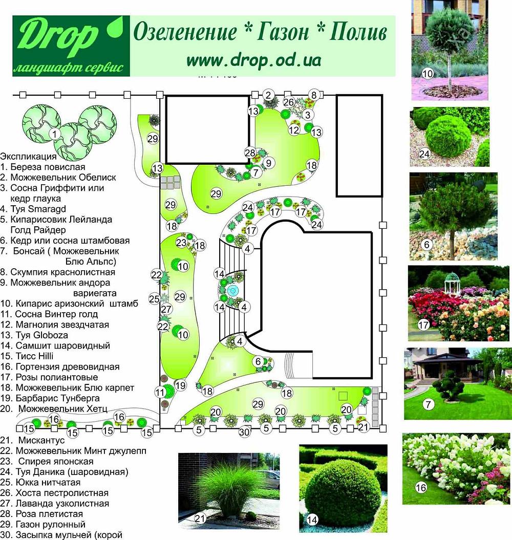Ландшафтный проект озеленения Черноморск