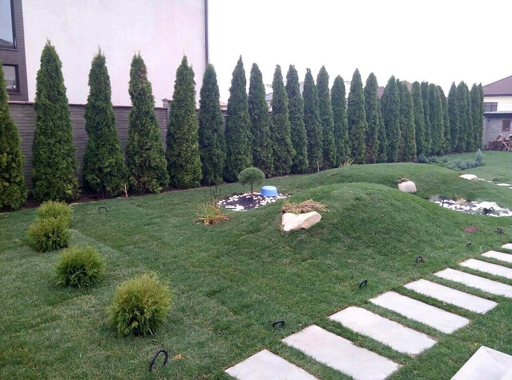 Уложенный рулонный газон в Совиньоне Одесса