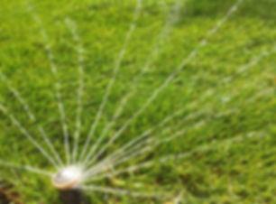 автополив газона дождевателем Rain Bird