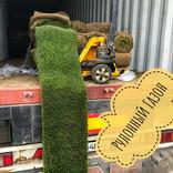 Доставка рулонний газон в Одесу