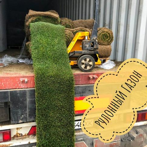 Продаж рулонного газону