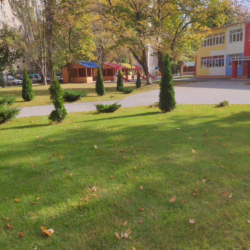 Озеленение детского сада в Одессе с помощью рулонного газона