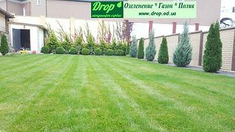 создадим зеленую полянку рулонным газоном Одесса