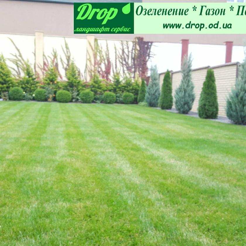 Ландшафтный дизайн и рулонный газон в Совиньоне