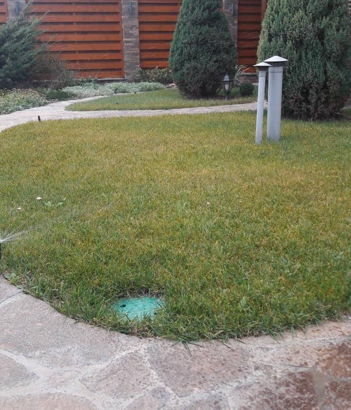Рулонный газон - как основа ландшафтного дизайна. Дополняет и подчеркивает все детали проекта.