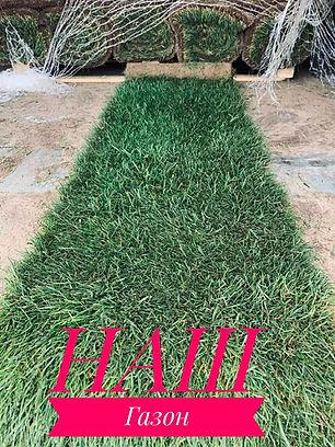 наш газон продажа
