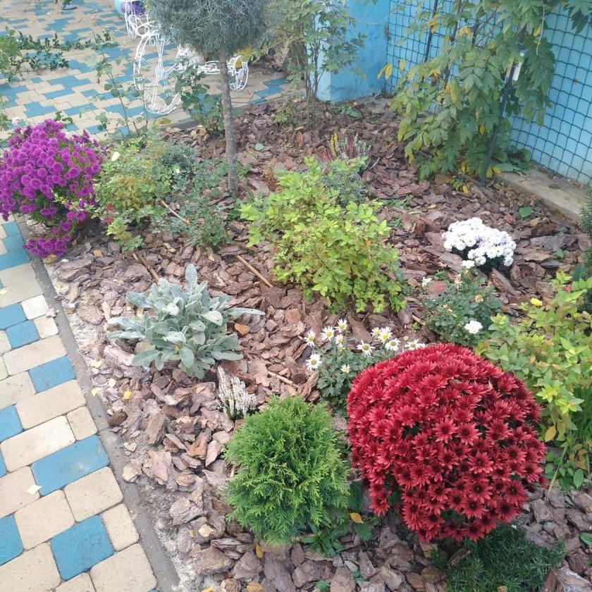 Устройство цветника в Одессе