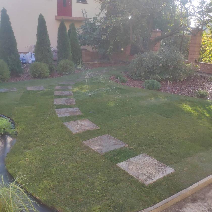 Уложили рулонный газон