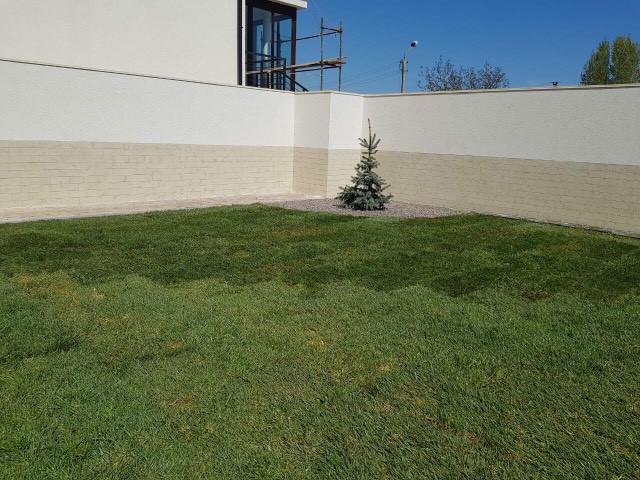 Вид рулонного газона сразу после выполнения работ