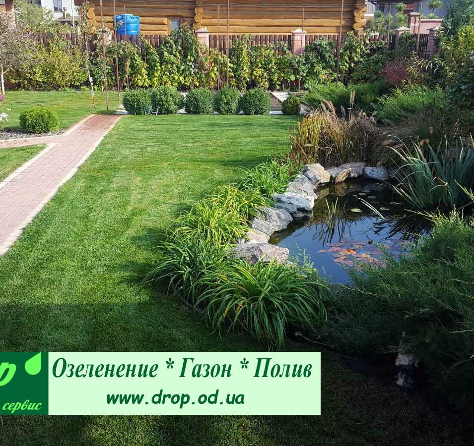 Озеленение учатска в поселке Дайберг под Одессой