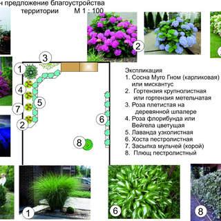 Ландшафтный дизайн маленького участка в Одессе