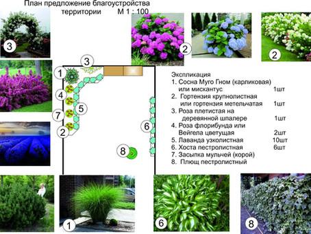 Ландшафтный дизайн маленького сада. Одесса