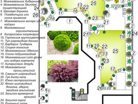Сделаем Озеленение в Одессе