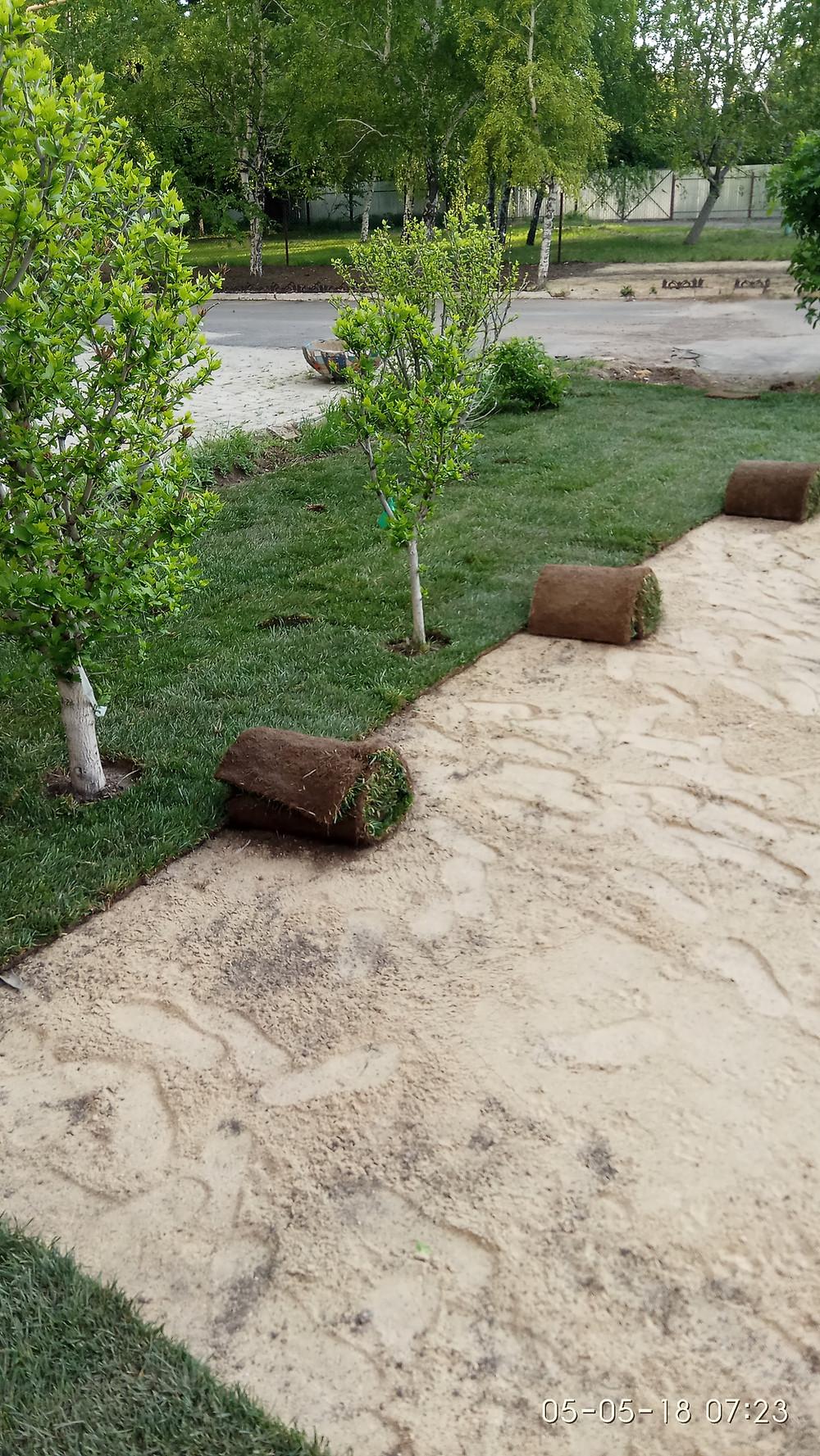 Сделать рулонный газон Одесса