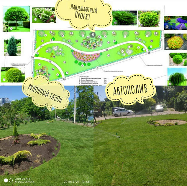 Озеленение территории на 9 фонтана в Одессе