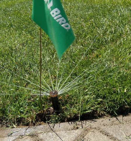 Система полива газона Rain Bird