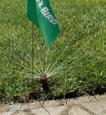 Система поливу газону Rain Bird