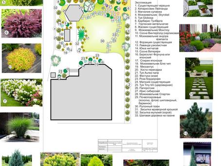 Ландшафтный дизайн в Одессе 2019