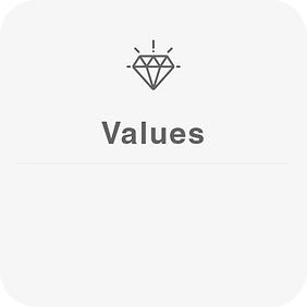 values.png