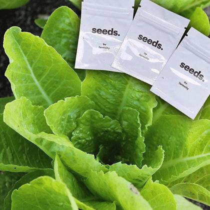 Jericho Lettuce Seeds