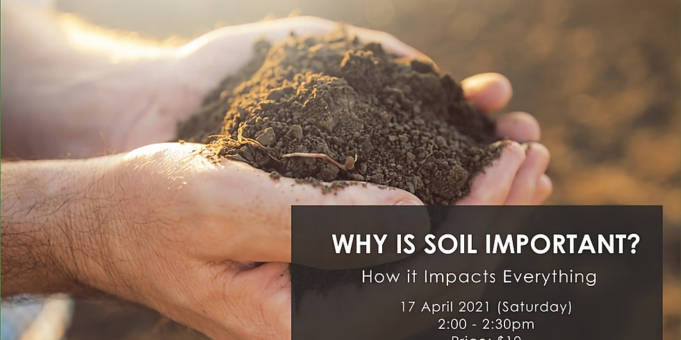 Why Is Soil Important? by The Green Collective