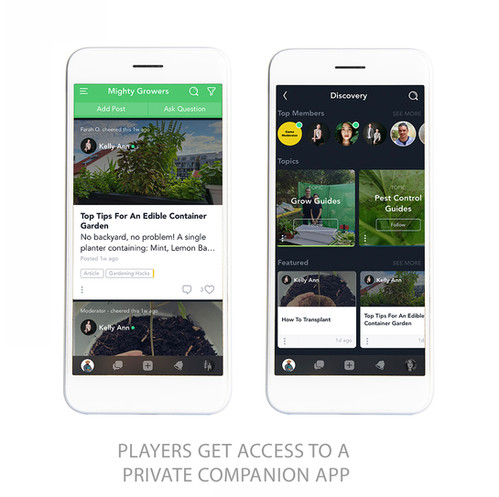 companion-app copy.jpg