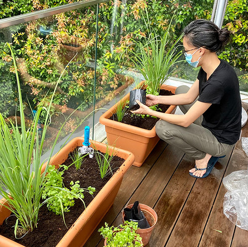 grow-kit9.jpg