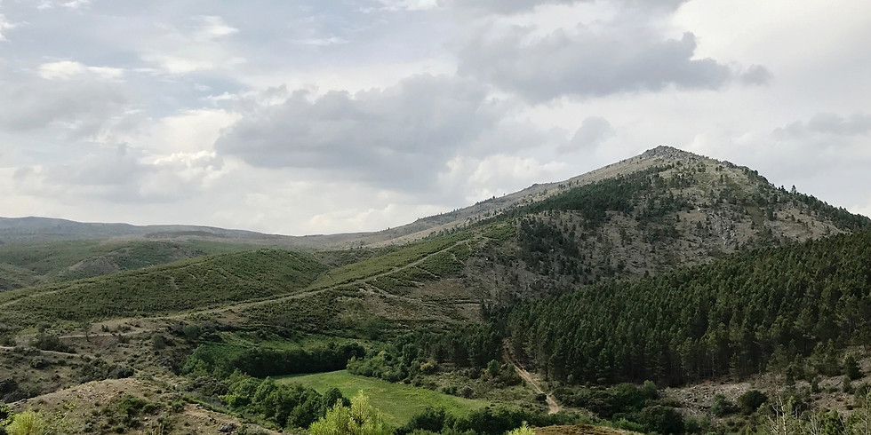 Iberian Wolf Expedition May'18